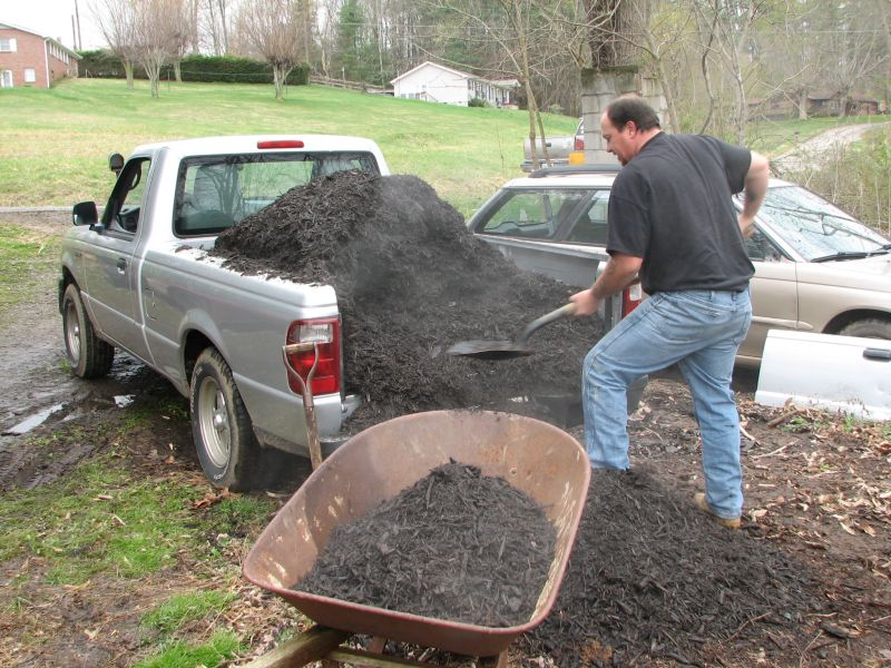 pic of the steam coming off the mulch as Jack unloads it